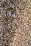 Sand with seashell at beach Royalty Free Stock Photo