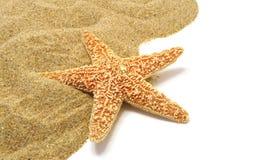 Sand and seastar border Stock Image