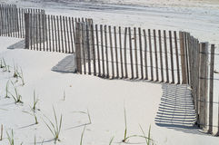 Free Sand Shadows Stock Images - 41243034
