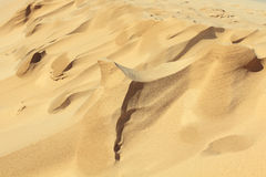 Sand Shapes Created By Wind Royalty Free Stock Image