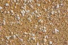 Sand and Shell Background Stock Photography