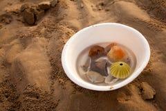 Sand&Shells Royaltyfria Foton