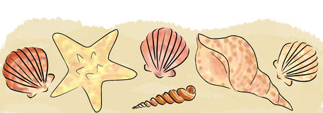 Sand and shells border Royalty Free Stock Photos