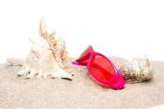 Sand with shells and sunglasses Stock Photos