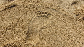 Sand. Single foot print in the sand Stock Image