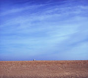 Sand and Sky. Simple photo of sand and a blue sky Stock Image