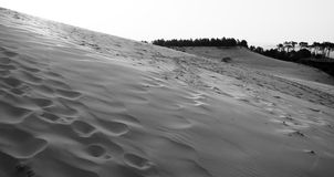 Sand slope of dune with smooth footprints Royalty Free Stock Images