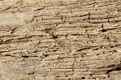 Sand soil dirt texture background crack faults. Blank space. Close up. Design element. Empty space stock photos
