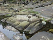 Sand stone. Beach on Galiano Island Stock Photos