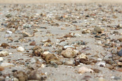Sand and stone on the beach Stock Image