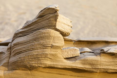 Sand stone in the desert. With shallow depth of field, UAE Stock Photography