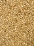 Sand stone texture stock photo