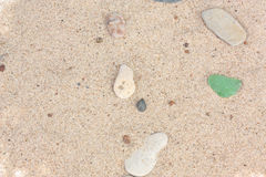 Sand with stones and pieces of glass Stock Images