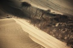 Sand storm in desert Stock Photos