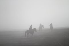 Sand Storm Horse Rider Stock Images