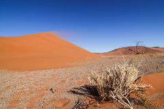 Sand storm and red dune Royalty Free Stock Photography