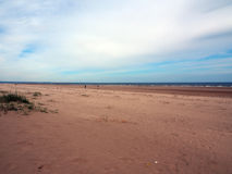 Sand-Strand, Tentsmuir-Wald, Tayport Lizenzfreies Stockfoto