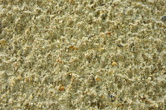 Sand. Surface design by raindrop royalty free stock photography