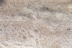 Sand surface after the rain Stock Photography