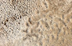 Sand surface after the rain Stock Images