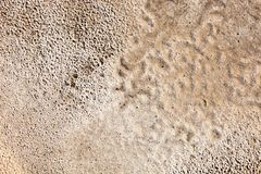 Sand surface after the rain Stock Image