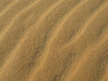 Sand texture. On the beach or desert Royalty Free Stock Image
