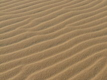 Sand texture. On the beach or desert Royalty Free Stock Photo
