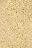 Sand Texture. Small clean wet sea sand background Stock Photography