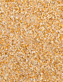 Sand Texture. Can be use as background Stock Photos