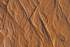 Sand texture. Close up of sand surface Royalty Free Stock Photos