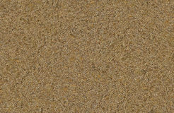 Sand texture Royalty Free Stock Photo