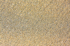 Sand texture. Beach sand texture for background Stock Photos