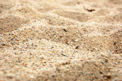 Sand texture. Texture of yellow sand can be used as background Stock Images