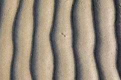 Sand texture. Background with beige fine sand. Sharp lines of waves on sand. Sand surface on the beach, view from above. Sandy structure outdoors on a sunrise Royalty Free Stock Photography