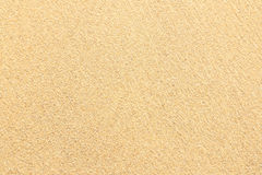 Sand texture. Sand beach for background. Top view Stock Photography