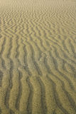 Sand texture. At the  beach with copy space Stock Photos