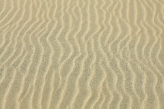 Sand Texture. Brown sand. Stock Images