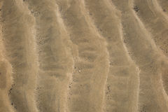 Sand Texture. Brown sand. Background from fine sand. Stock Images