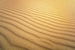 Free Sand Texture. Brown Sand. Background From Fine Sand. Sand Background. Yellow Dune In The Sun. The Sun Shines On The Sand Royalty Free Stock Images - 146833929