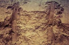 Sand texture. Stock Image