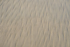 Sand Texture Close Up Royalty Free Stock Images