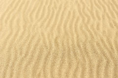 Sand texture Dented wave of the blow of the wind. Stock Images