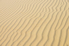 Sand texture in the desert Stock Images