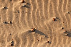 Sand texture with embossed texture. Sand texture with embossed wind texture and pebbles royalty free stock photos