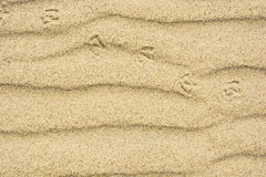 Sand texture with footprint of bird Royalty Free Stock Image