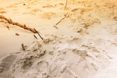 Sand texture pattern beach sandy background Royalty Free Stock Images