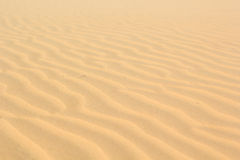 Sand texture at Phan Thiet, Vietnam Royalty Free Stock Photo