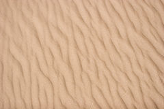 Sand texture with ripples Stock Photos