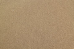 Sand texture. Sandy beach for background Stock Images