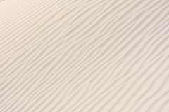 Sand texture. Stock Image